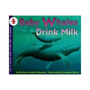Baby Whales Drink Milk