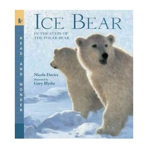 Ice Bear Read and Wonder: In the Steps of the Polar Bear