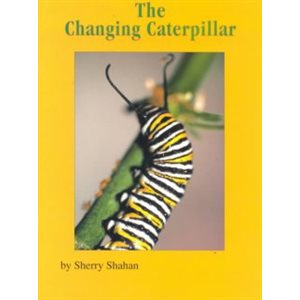 The Changing Caterpillar