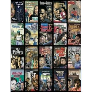 Complete Bluford Series (all 20 books)
