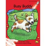 Busy Buddy