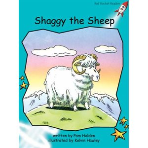 Shaggy the Sheep