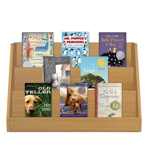 Newbery Award and Honor Winners (Large) (14 Bk Set)