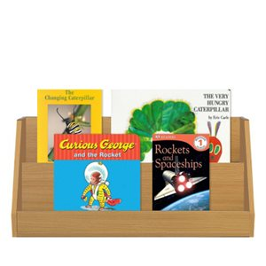 Grade 1 Fiction / Nonfiction Paired Studies Set (10 Bk Set)
