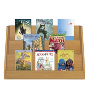 Grade 4 Fiction / Nonfiction Paired Studies Set (12 Bk Set)
