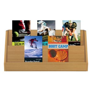 Reading Intervention Grades 4-5 Sports (8 Books)