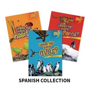 Libros Rayo— Conoce los grupos de animales (Lightning Bolt Books— Meet the Animal Groups) (6 Bk Set)