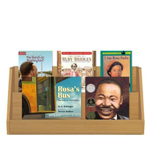 Civil Rights (7 Books)