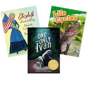 Journeys Grade 4 Unit 5- Change it Up (4 Books)