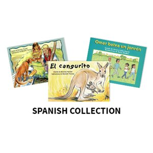 Reading Recovery Spanish Level 10 (10 bk set)