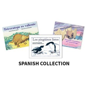 Reading Recovery Spanish Level 11 (5 bk set)