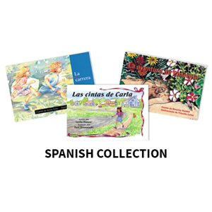 Reading Recovery Spanish Level 13 (5 bk set)