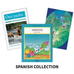 Reading Recovery Spanish Level 17 (5 bk set)