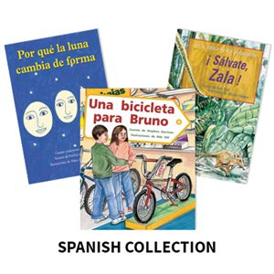 Reading Recovery Spanish Level 19 (5 bk set)