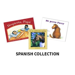 Reading Recovery Spanish Level 3  (20 bk set)