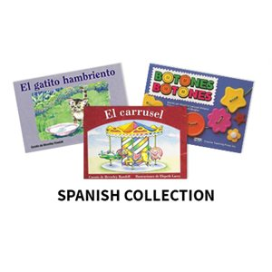 Reading Recovery Spanish Level 4  (20 bk set)