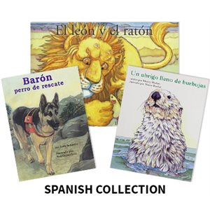 Reading Recovery Spanish Level 9 (12 bk set)