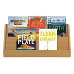 NGSS Grade 4 - Earth and Human Activity (8 Books)
