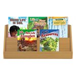 NGSS Grade 4 - Earth's Systems (5 Books)