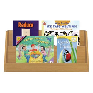 NGSS Kindergarten - Earth and Human Activity (7 Books)