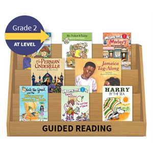 Guided Reading Collection: Grade 2 At Level (20 Books)