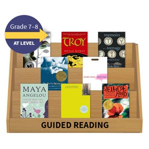 Guided Reading Collection: Grade 7 / 8 At Level (19 Books)