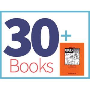 Holes Class Set (30 books, 1 Novel-Tie) (BMI)