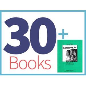 A Raisin in the Sun Class Set (30 books, 1 Novel-Tie) (BMI)